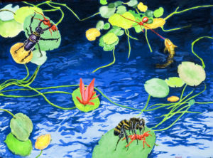 Dangerous Lily Pond